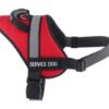 SA Harness For Sales