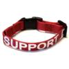 SA Collar For Sales